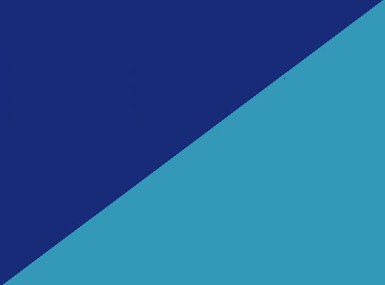 Granatowo/niebieski